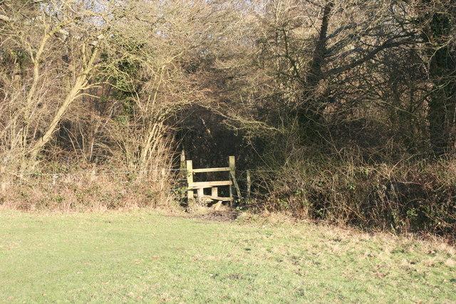 High Weald Landscape Trail enters Collingsbush Wood