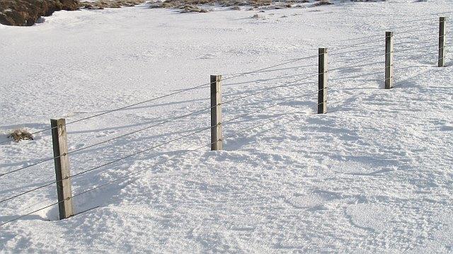Fence, Blackhope Scar