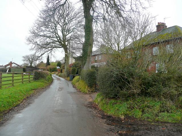 Back Lane, Newton Poppleford 1
