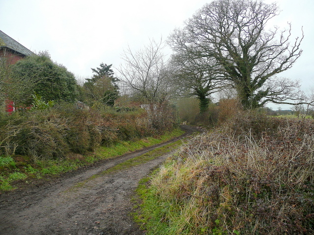 Footpath north from Back Lane