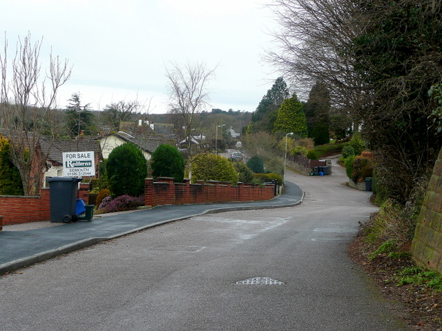 Burrow lane