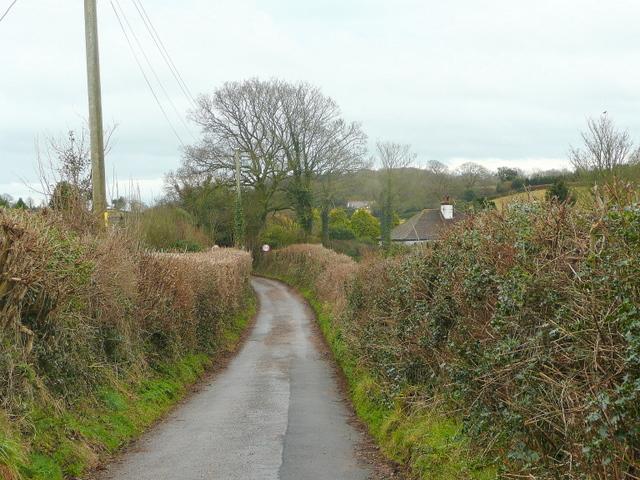 Lane to Burrow