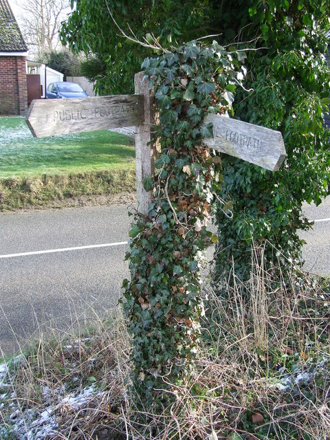 Overgrown Signs