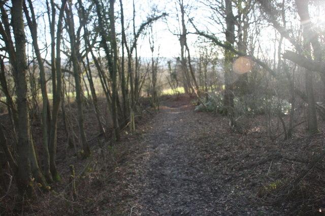 Vanguard Way south of Cansiron Lane