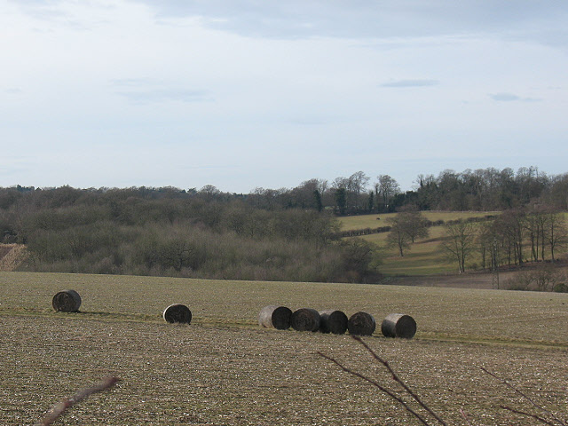 Silage bales near Round Wood