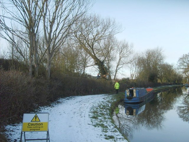 Canal Tree Felling