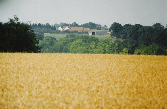 towards Penley Farm, nr Stokenchurch