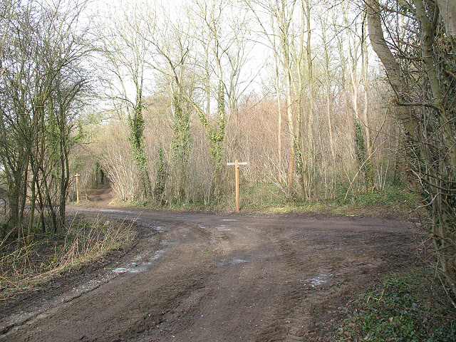 Junction of tracks at the bottom of Sheep Walk