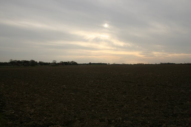 Farmland, south of Happisburgh