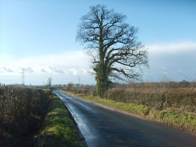 Patshull Road