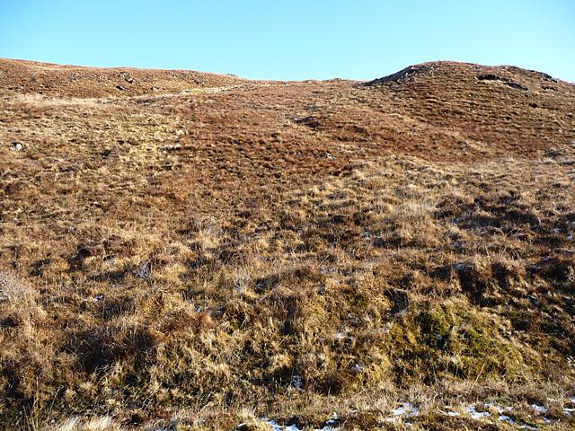 Hillside above the Tarskavaig road