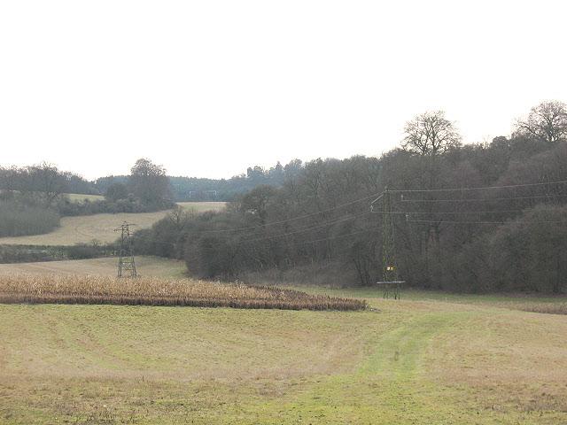 Pylons at Great Hurst Wood