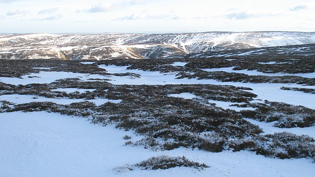 Snow covered bogs, Rough Moss
