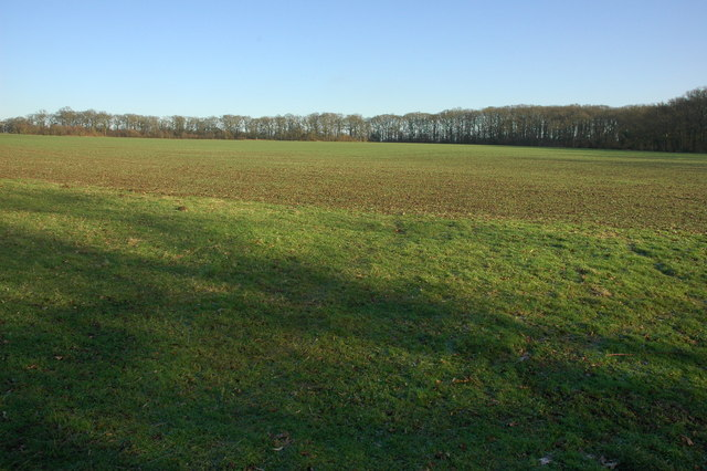 Arable field at Broad Green