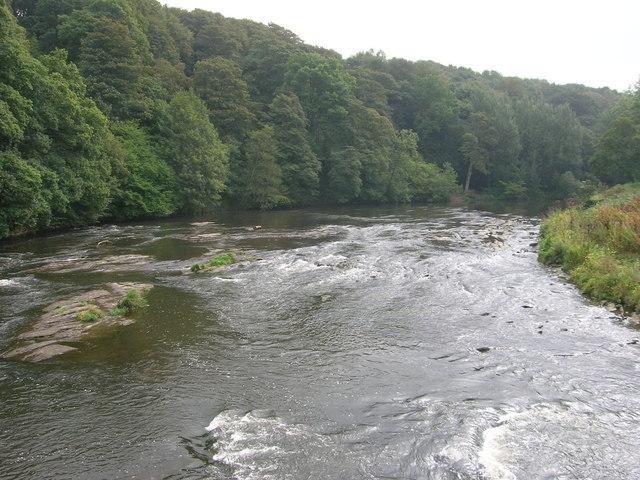 River Wear, Finchale