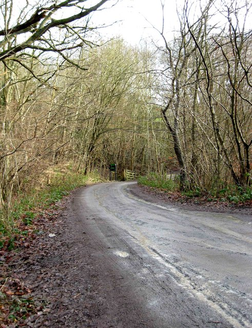 Road to Drymill Lane