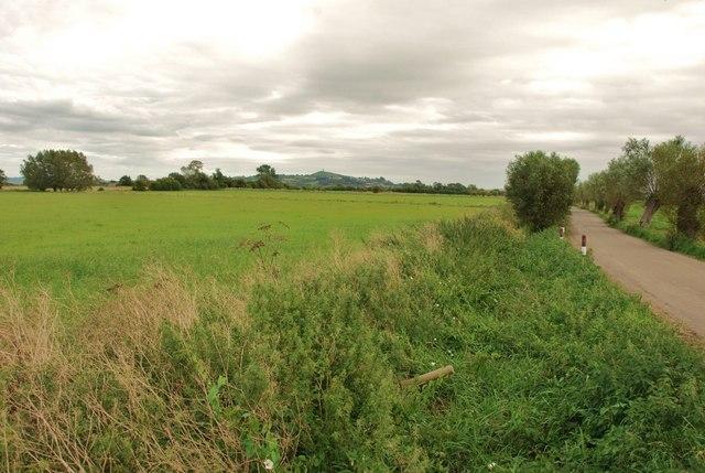 Godney: Somerset Levels
