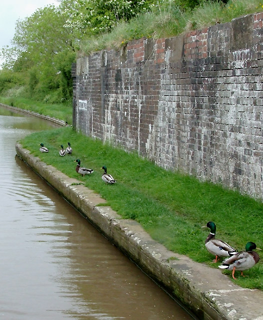 Remains of railway bridge over the Shropshire Union Canal