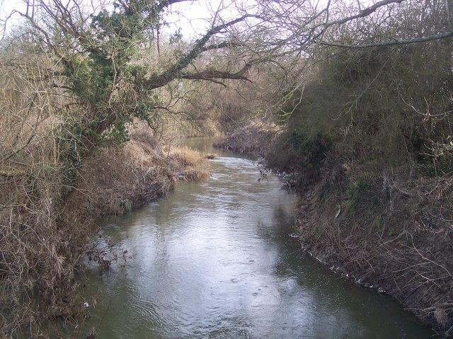 River Medway near Swaylands Farm bridge