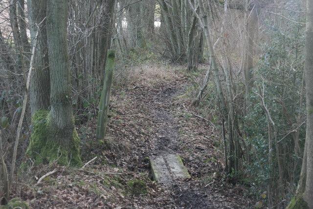 Small wooden footbridge, Vanguard Way, Spanden Wood