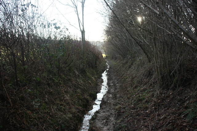 The Vanguard Way looking seriously like a stream bed
