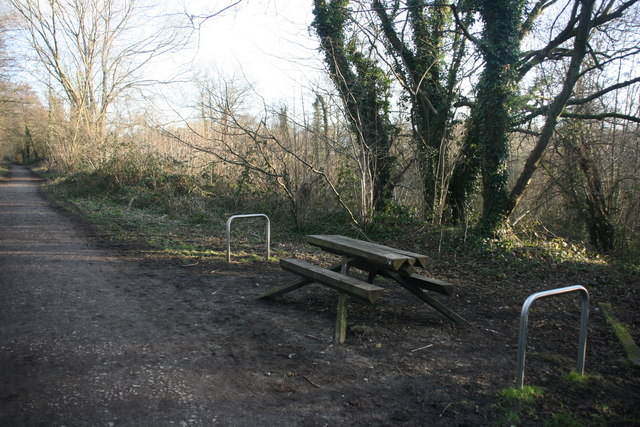 Bench, Forest Way