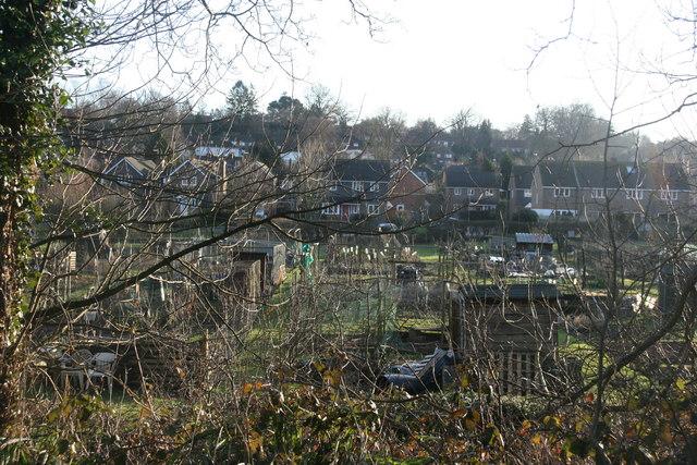 Blacklands Farm Allotments, Forest Row