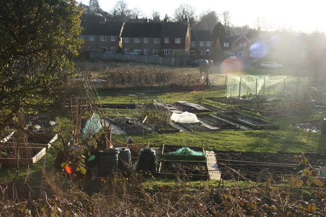 Blacklands Farm Allotments