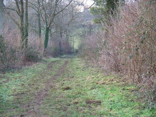 Path to Over Norton