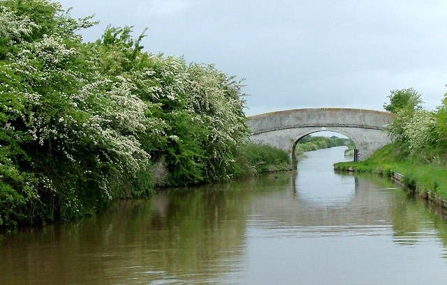 Mickley Bridge (No 84) near Hack Green, Cheshire