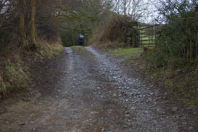 Farm track near Starnthwaite