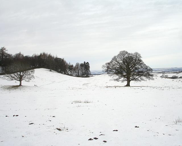 Footpath to Barningham Park