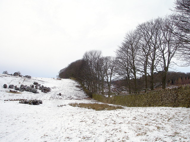 Footpath south of Barningham Park