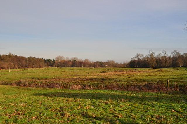 Marsh/grazing lands