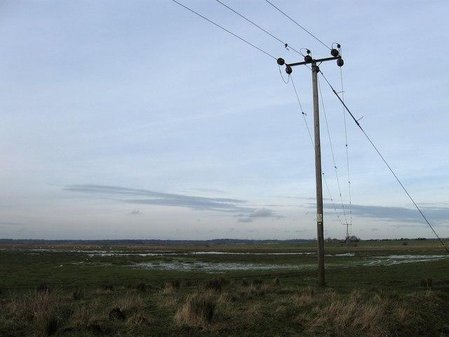 Widear Marsh