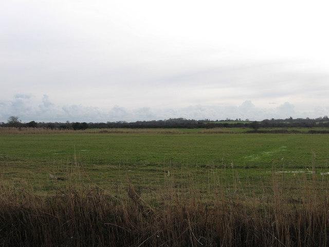 Inner Chilley Marsh
