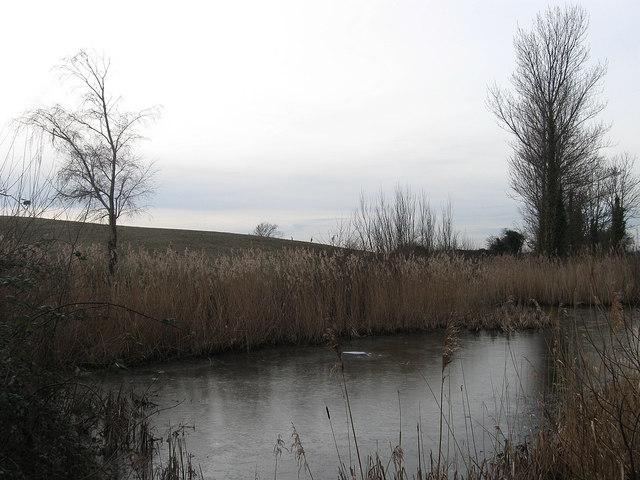 Frozen Pond, Chilley Green