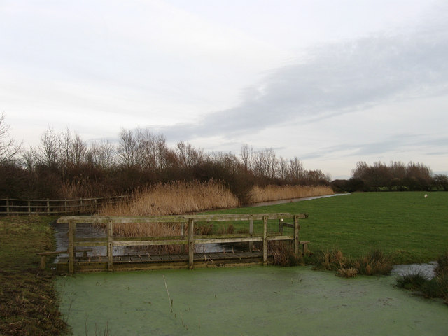 Footbridge, Martin's Ditch and Gut