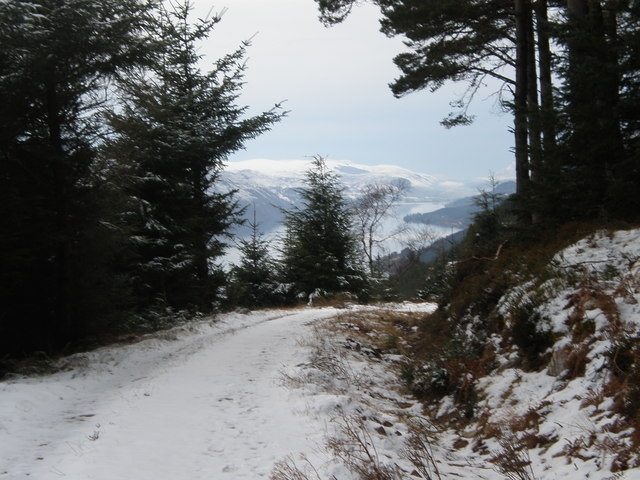 Great Glen Cycle Route in Creag-nan-Eun Forest