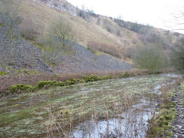 The seasonal stream in Deep Dale