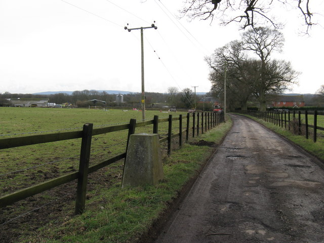 Trig. point on track to Patmans Farm