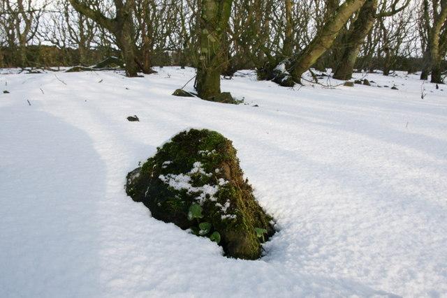 Snow in Halligarth, Baltasound