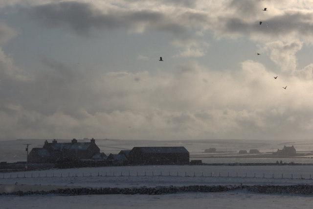 Buness, Baltasound, in the snow