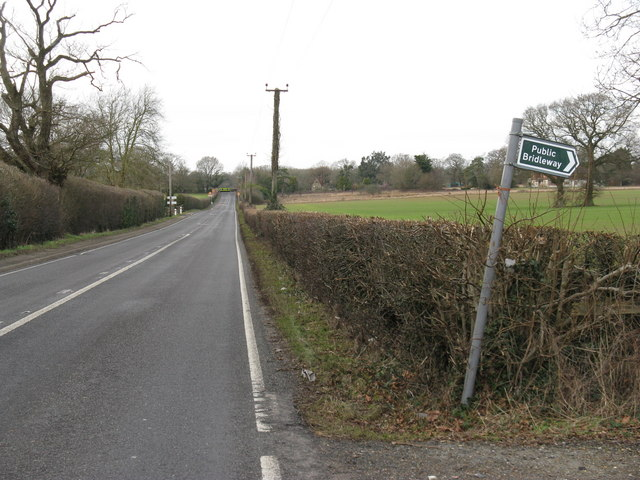 Bridleway sign by the A 272 heading to Coneyhurst