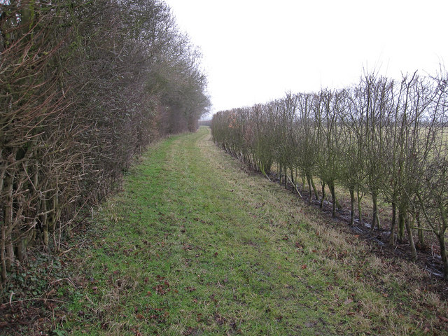 Footpath around Harefield Park