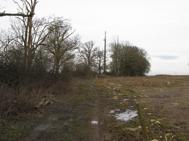 Communication mast on bridleway near Coolham