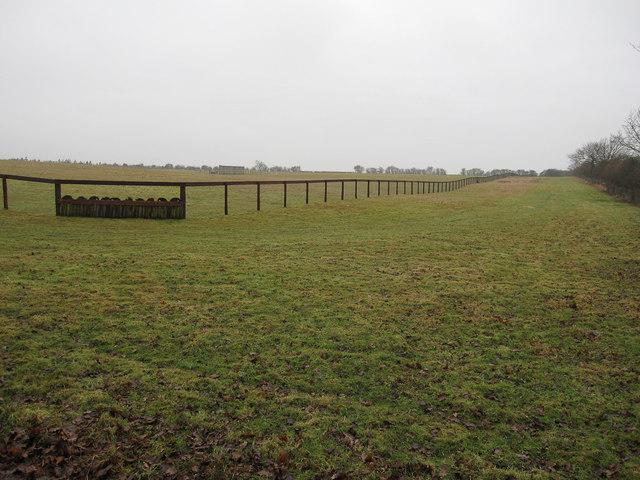 Horse training area