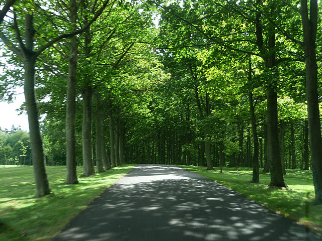 Entrance drive to Buscot House