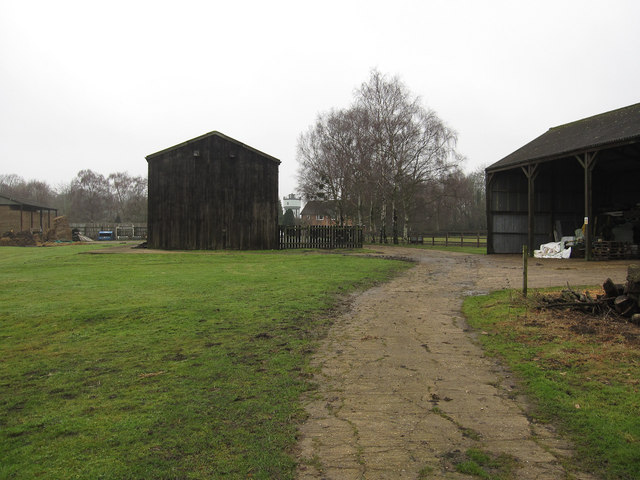 Barns by Brinkley Road