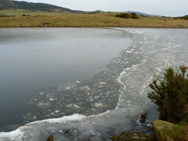 Edge of the ice